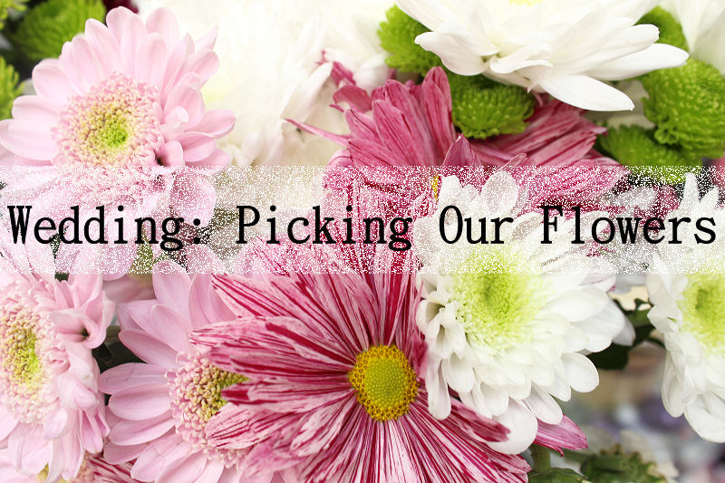 Choosing our wedding flowers