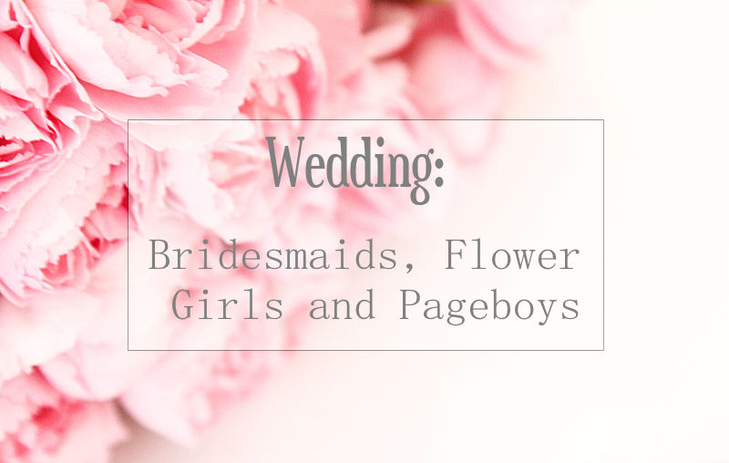 Wedding bridesmaids, flower girls and page boys