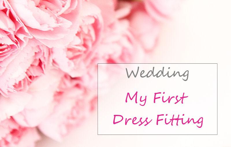 My first wedding dress fitting